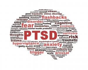 PTSD300